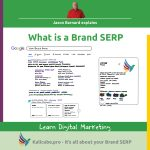 Picture of a Brand SERP - Kalicube Digital Marketing Glossary