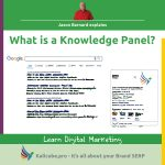 WHat is a knowledge panel
