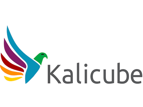 Kalicube – the Brand SERP specialists